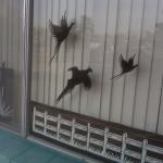 vertical door cranes