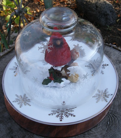 Etched Snow Dome - Terry Ricioli (cont)