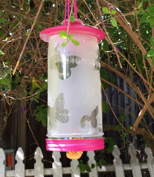 WCK Etched Butterfly Feeder
