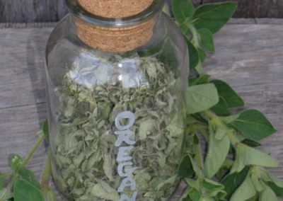 Etched Herb Jar