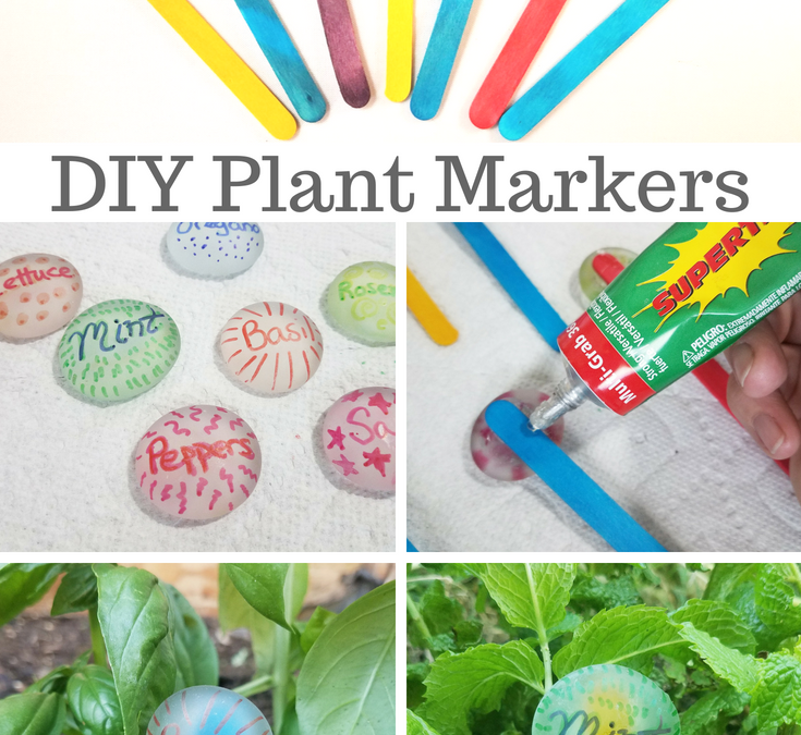 DIY Garden Markers from Dollar Tree Items